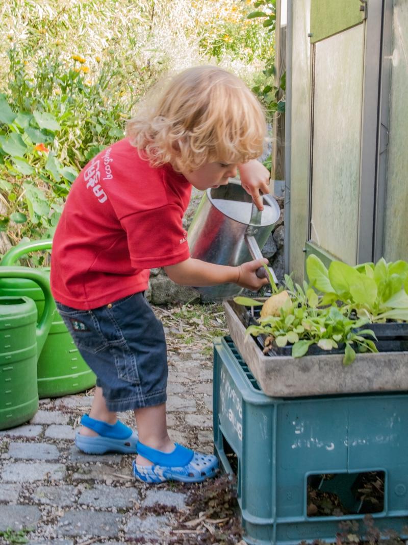 Kleiner Junge gießt Setzlinge
